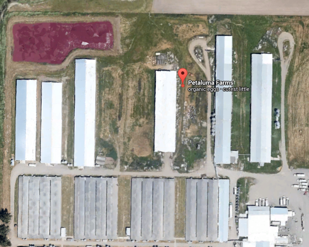 The imaging on Whole Foods's cartons shows green pastures. Google Earth reveals the truth: a massive industrial facility. Note the huge latrine pit in the top left (and compare it in size to the semi trucks in the bottom right).