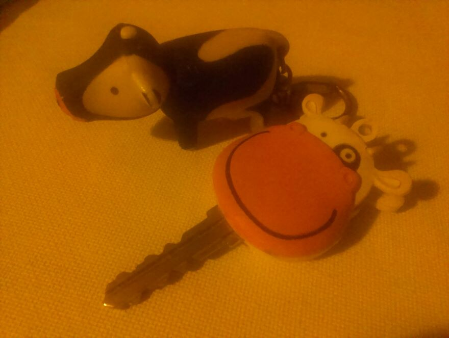 As an adult I moved away from the countryside, and I bought these two key chains to remind myself of my background. That was before I became an animal rights activist.