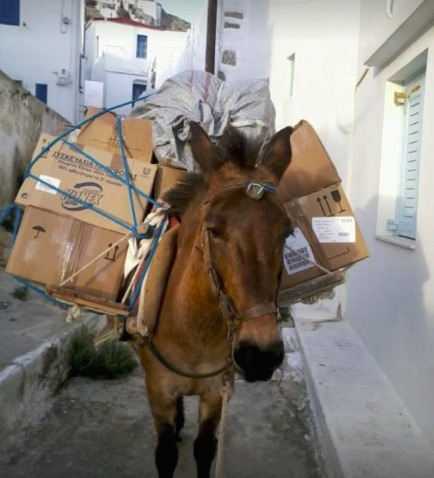 Donkey in Santorini, Italy forced to carry heavy load.