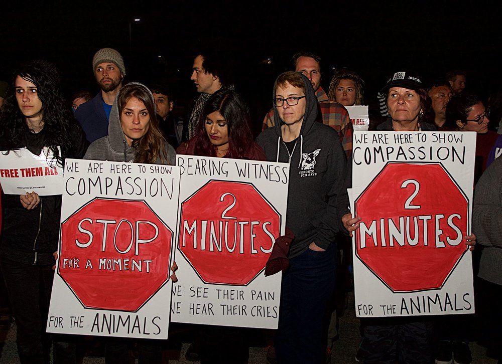 Activists stage a vigil and blockade at a slaughterhouse in Petaluma, CA. Photograph by Michael Goldberg.