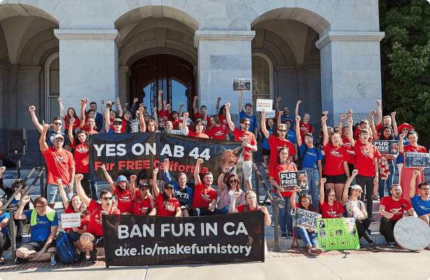 Ban fur in California