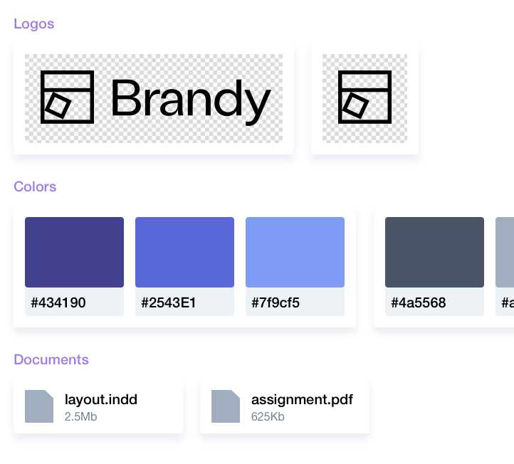 Organize your brand assets with Brandy - Your brand (new) asset manager