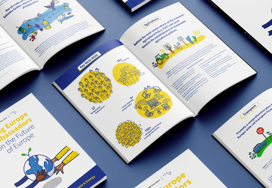 European Youth Parliament, Illustrations on the Future of Europe