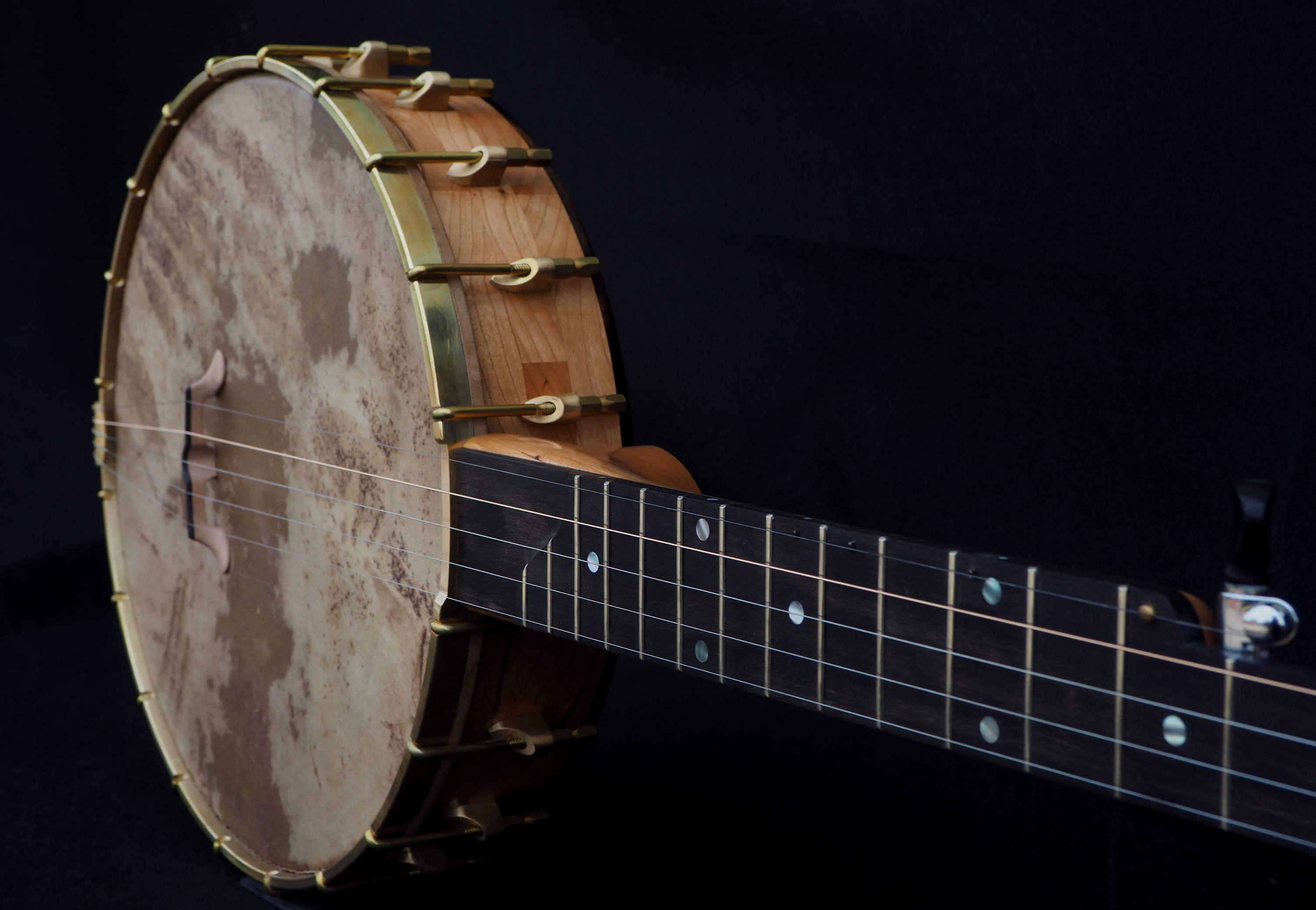 5 string Ebony Tone Ring Banjo