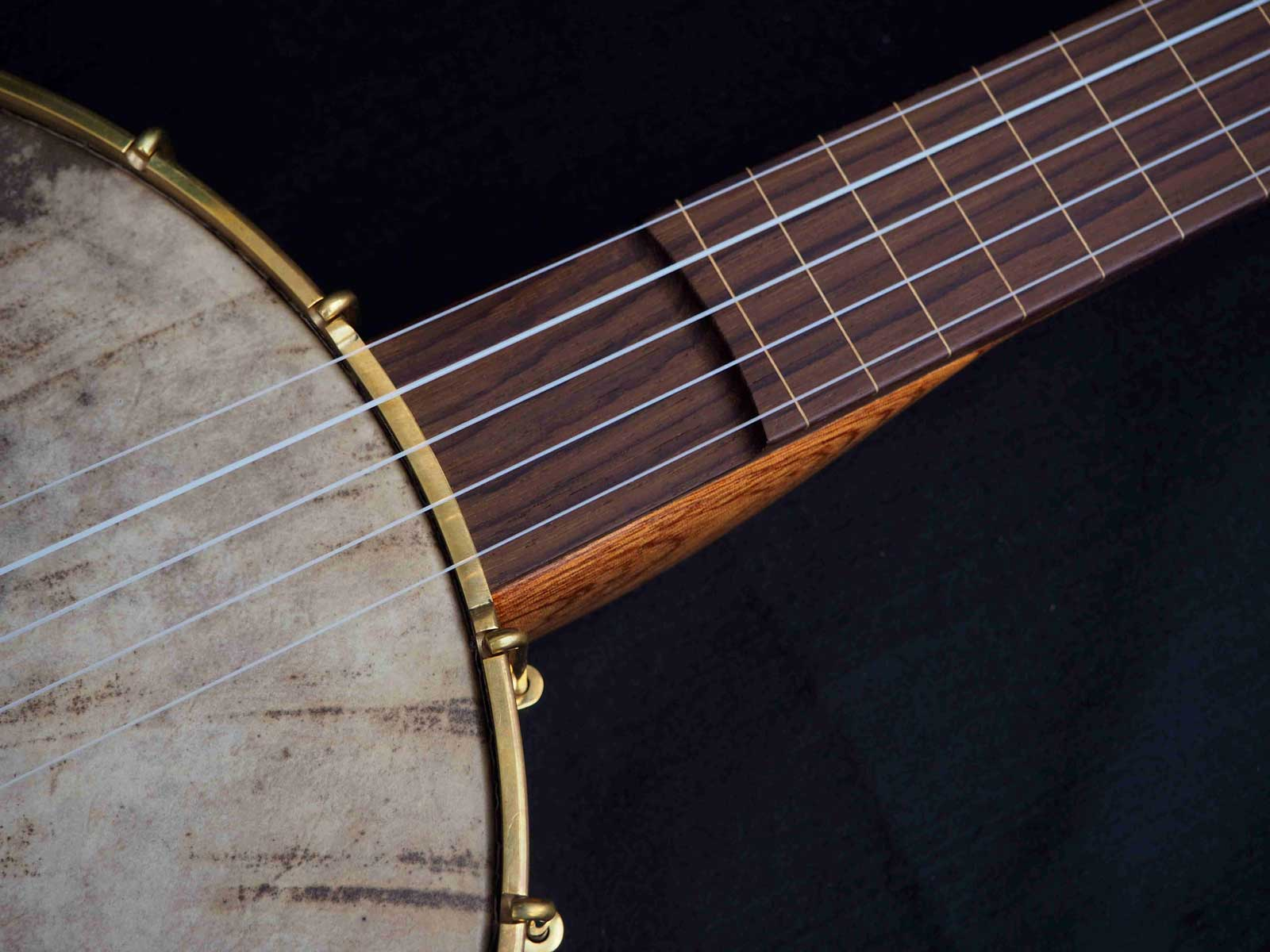no 25 rosewood tone ring banjo cut