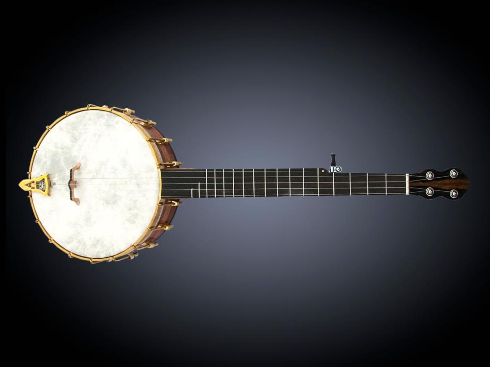 No 21 Rosewood Tone Ring Banjo