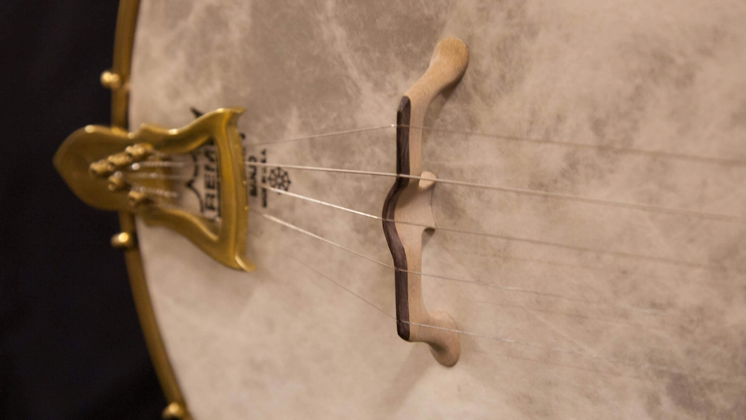 11-inch-rim-sapele-rosewood-banjo vallum