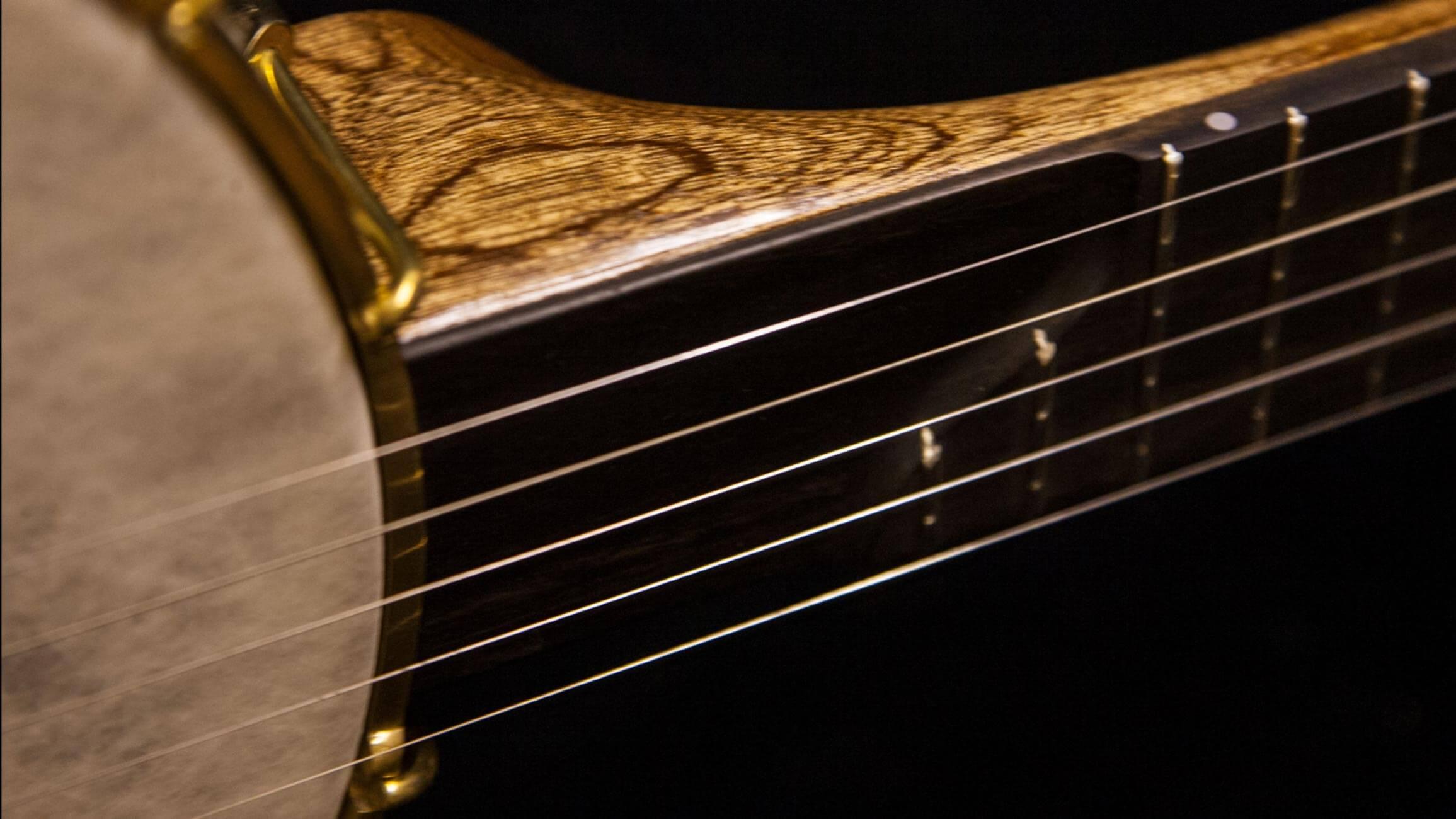 11-inch-rim-sapele-rosewood-banjo neck