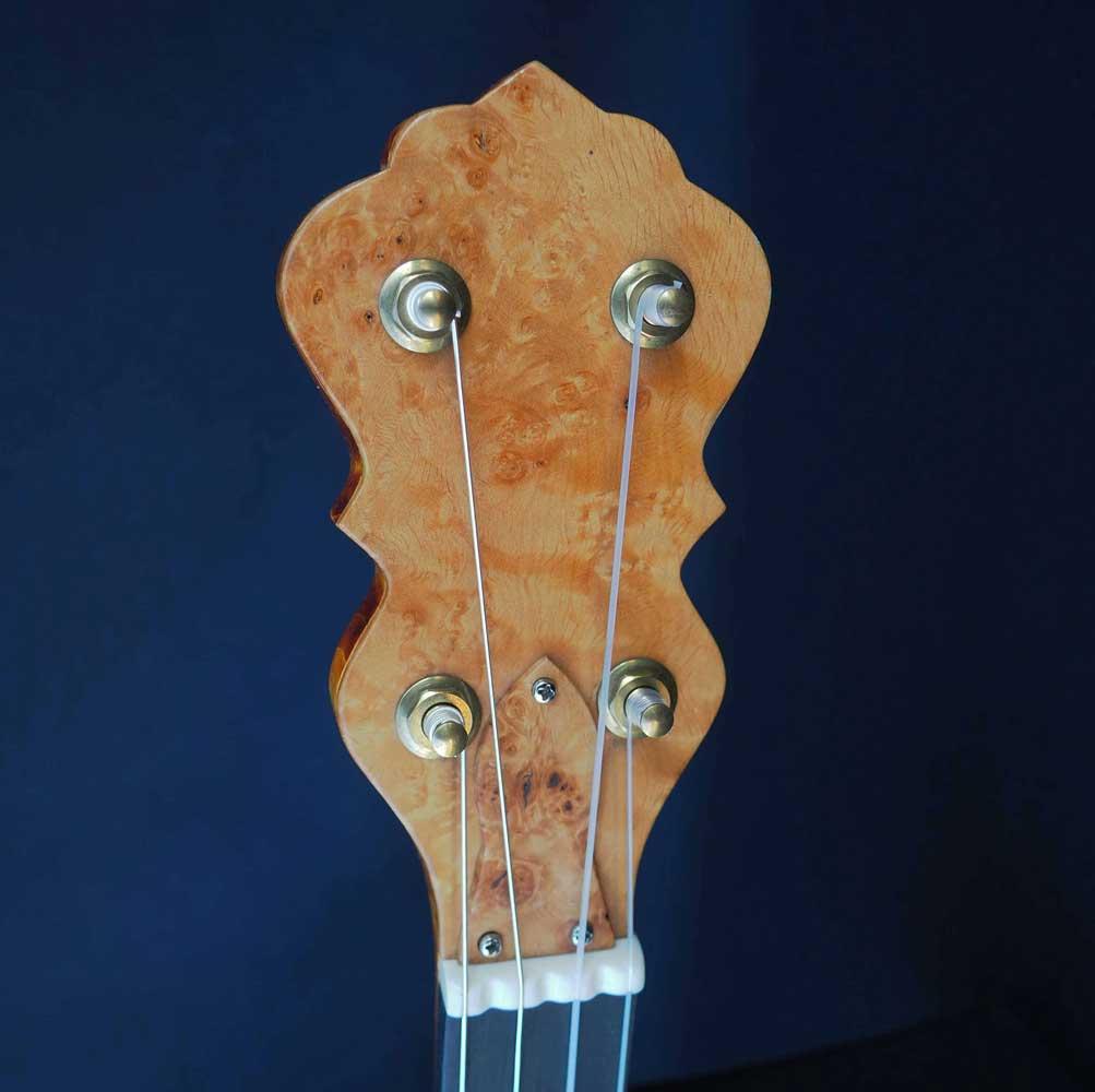 banjo overspun fretless headstock