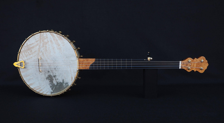 banjo overspun fretless uk
