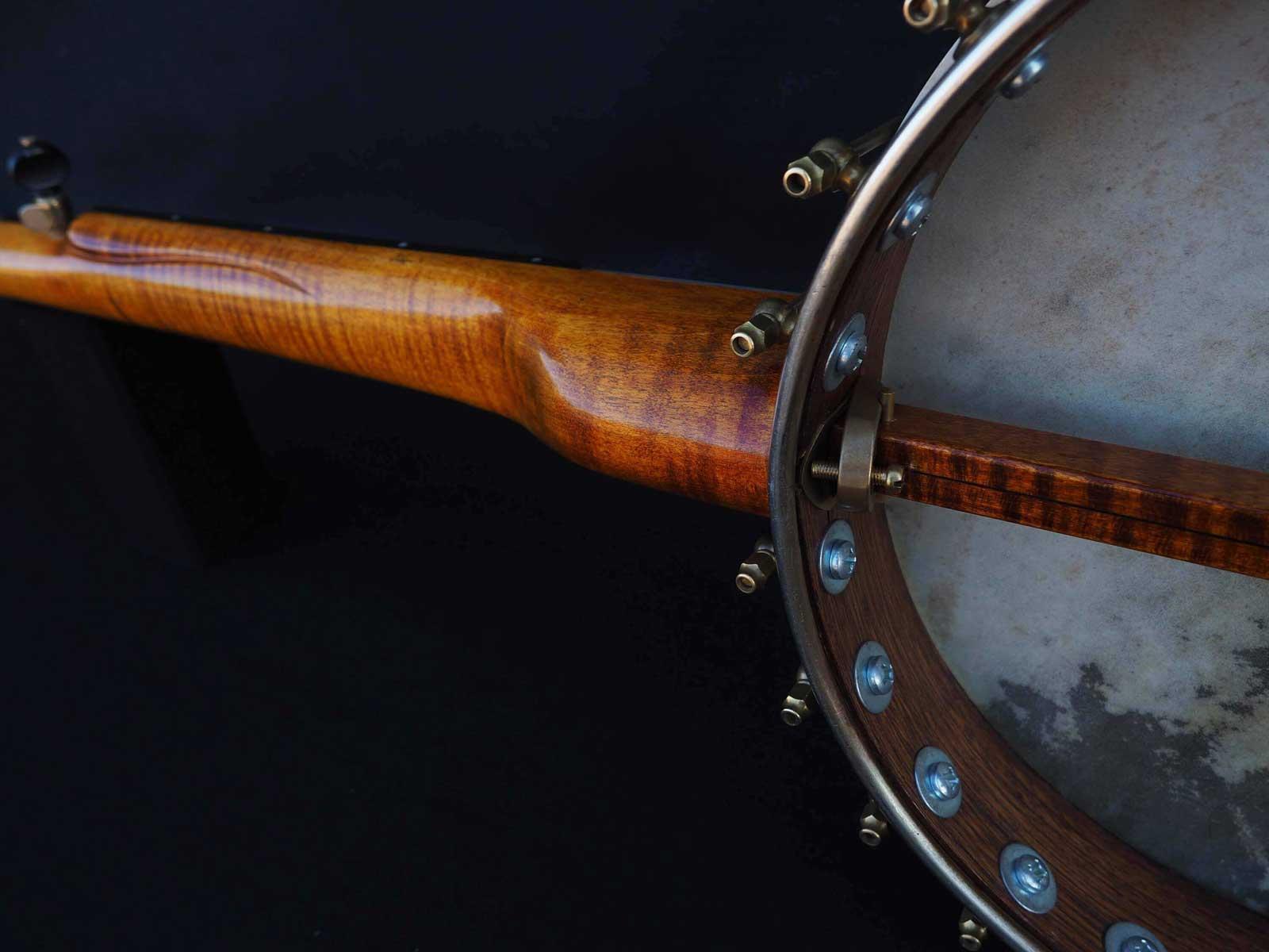banjo overspun fretless openback