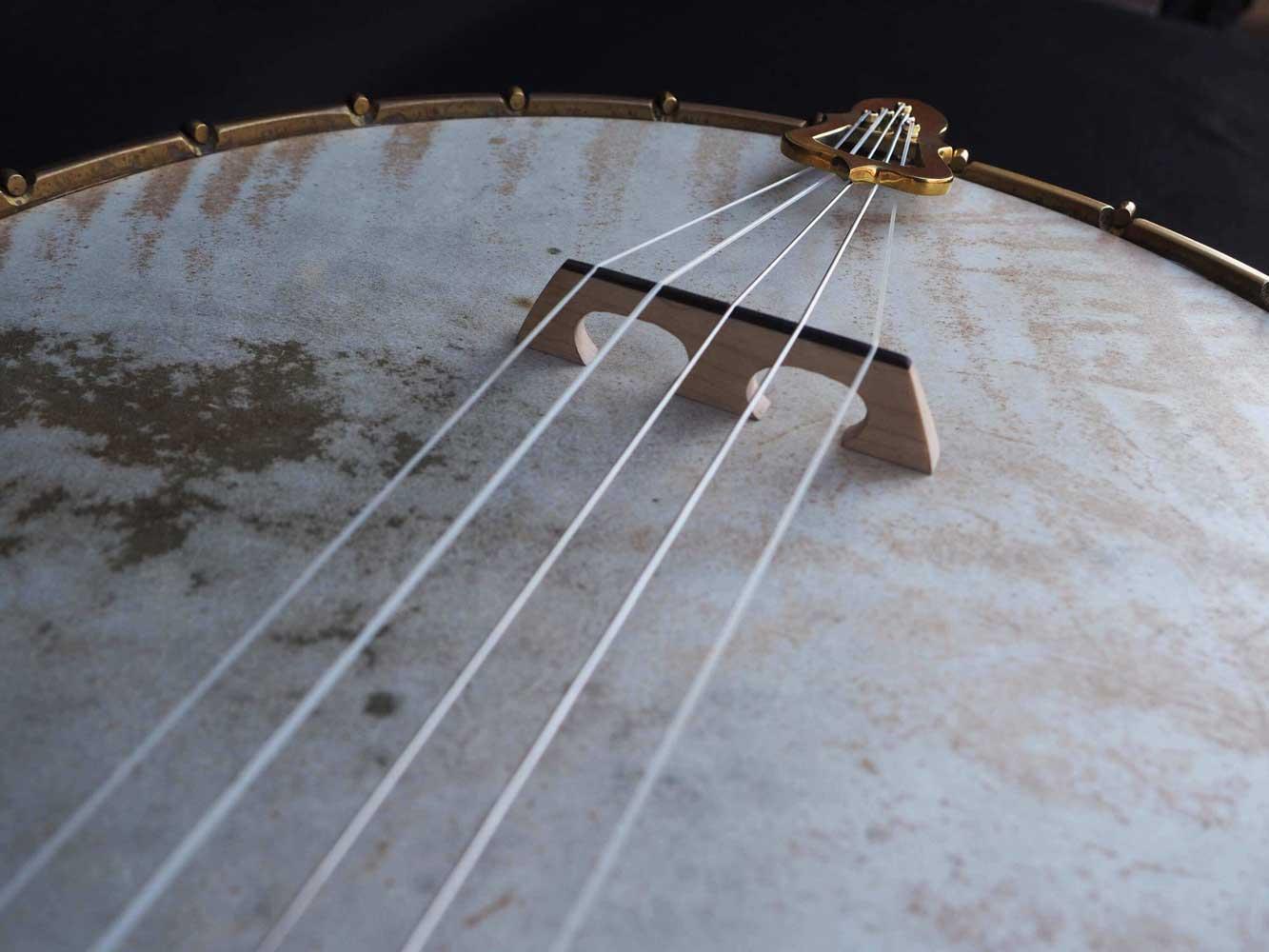 banjo overspun fretless goat skin