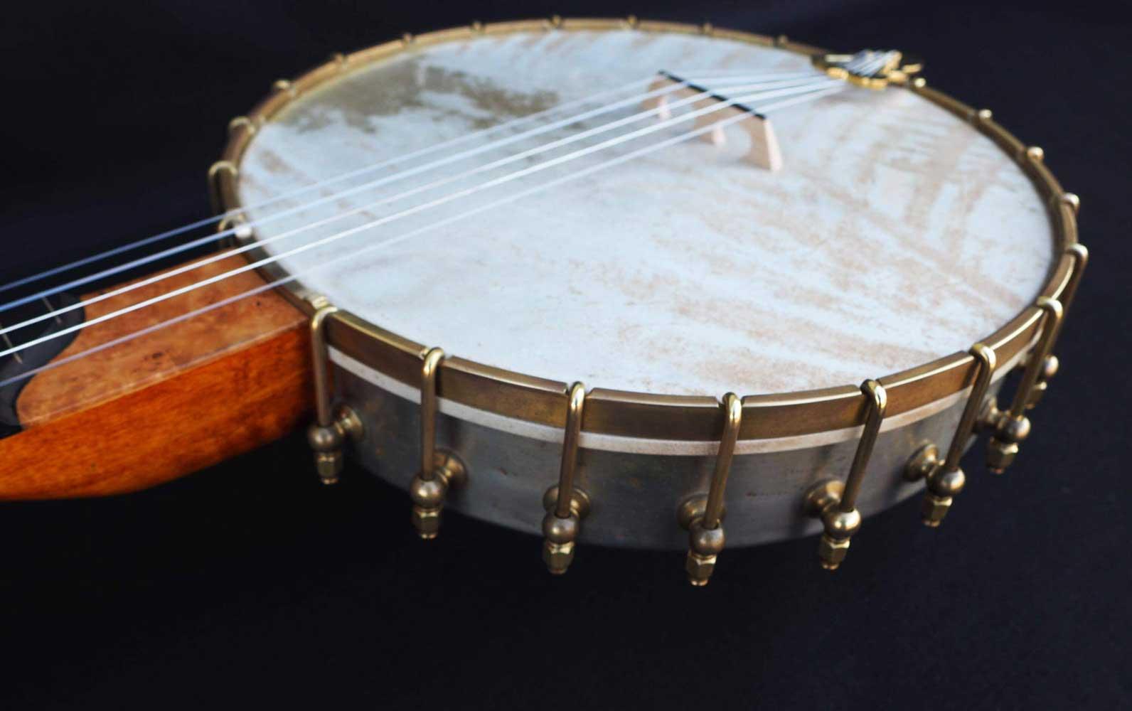 banjo overspun fretless  vellum