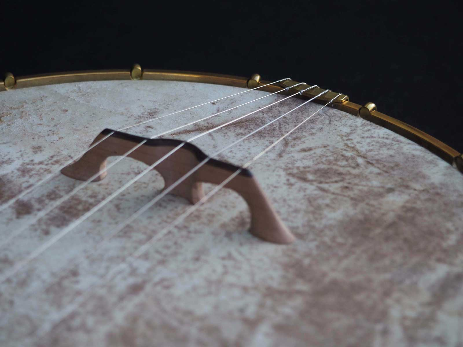 a scale open back banjo 5 string