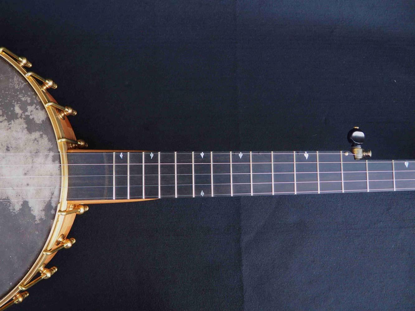 Edelweiss Banjo neck
