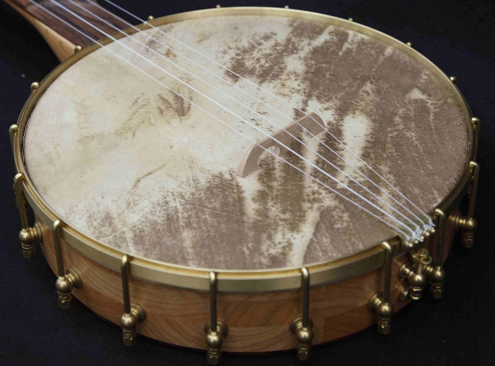 Pau Ferro Fretless Banjo vellum