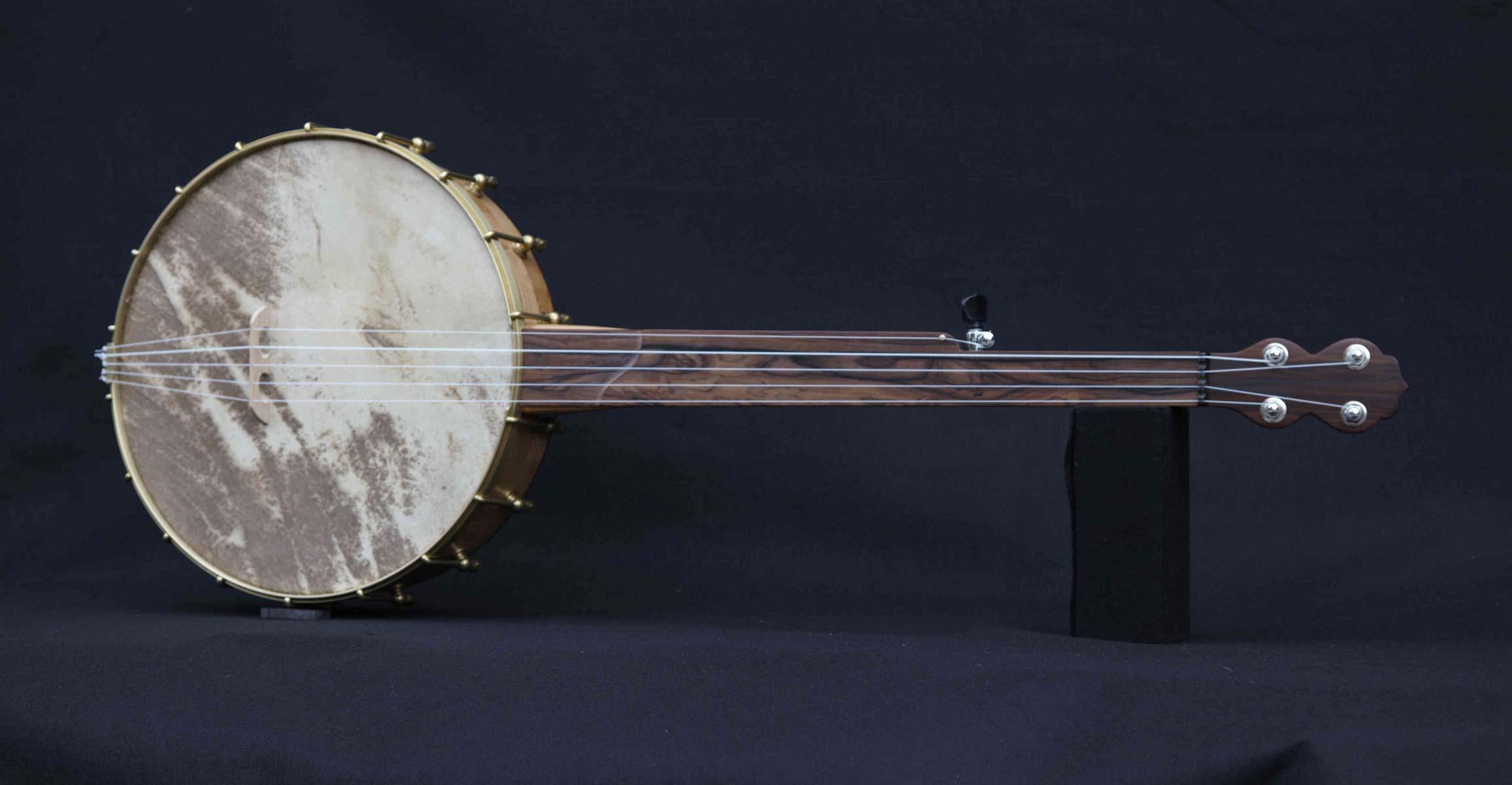 Pau Ferro Fretless Banjo