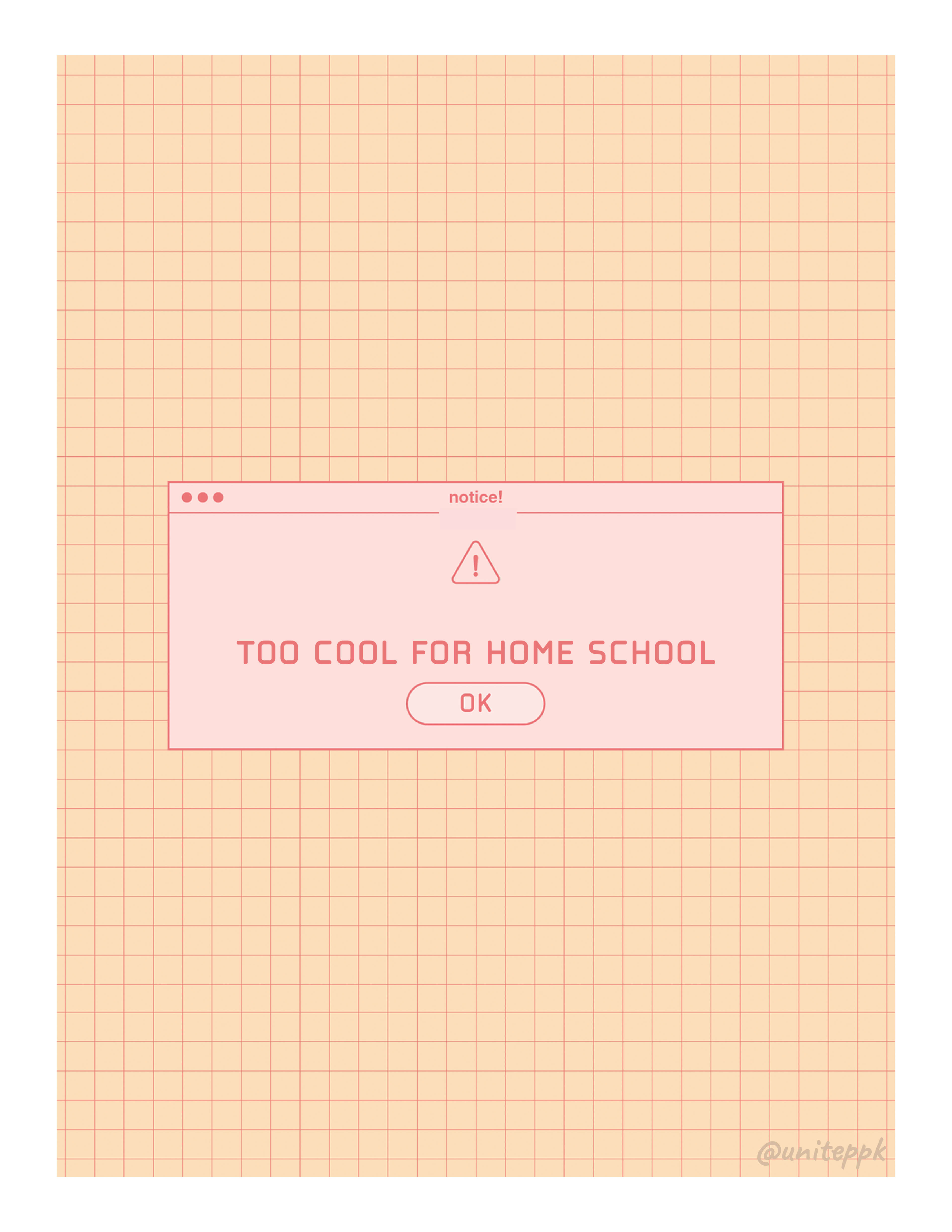 too cool for home school