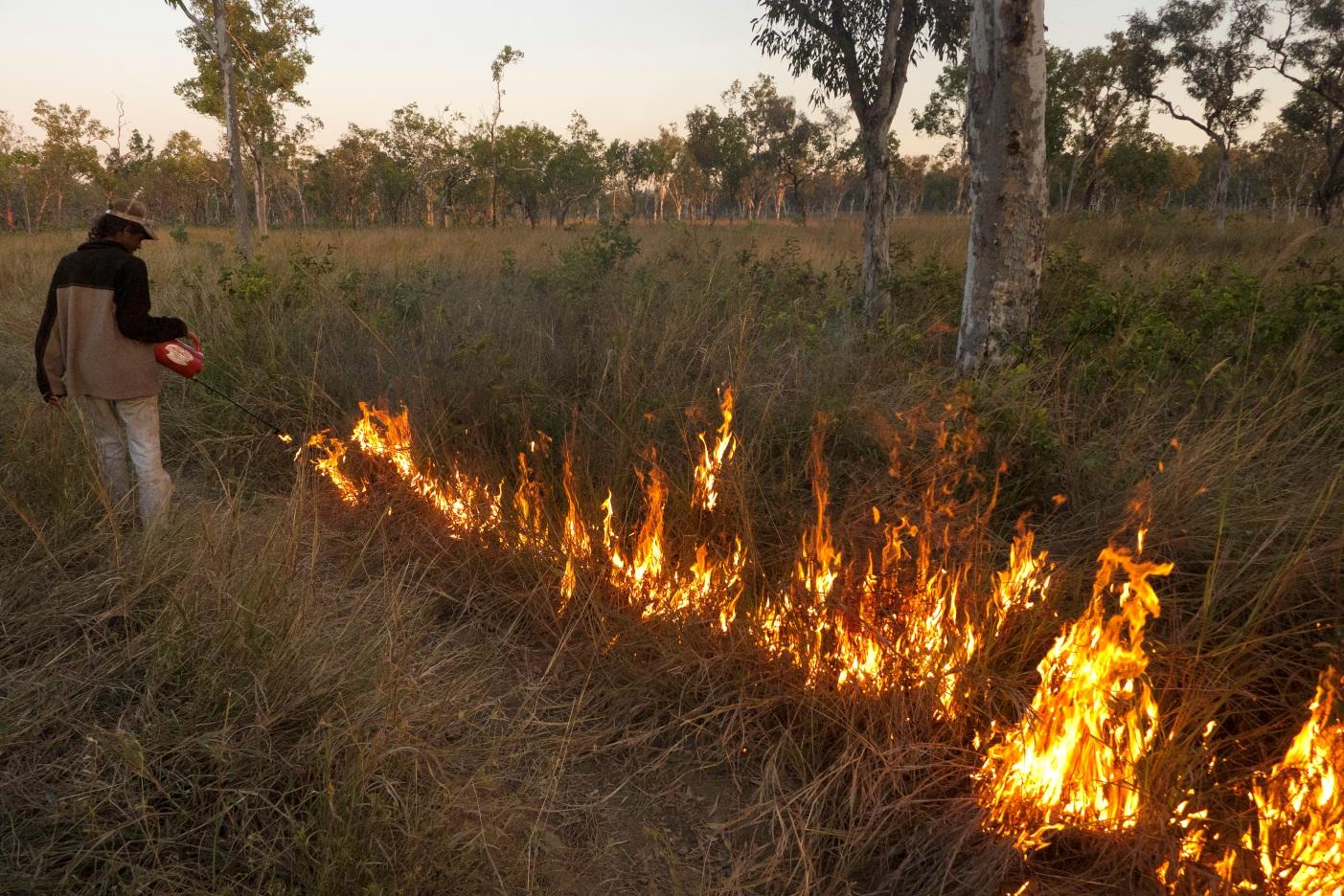 Sustainable savanna burning on Tiwi Islands, Australia