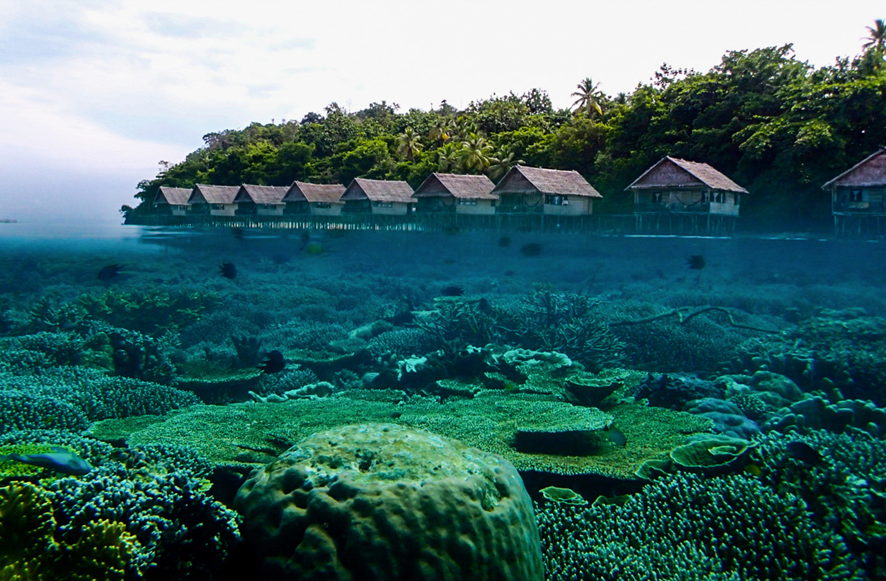 Resort challets blend with nature in Raja Ampat