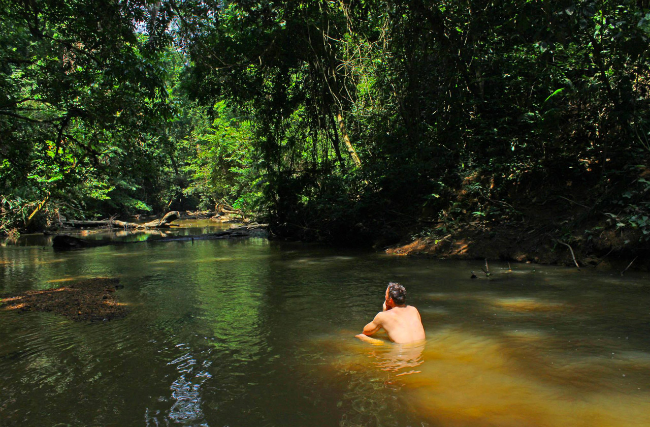 Rainforests' streams and rivers provide welcoming refreshment during the arduous hikes