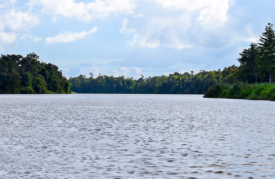 The vastness of the Kinabatangan River, Sabah, Borneo