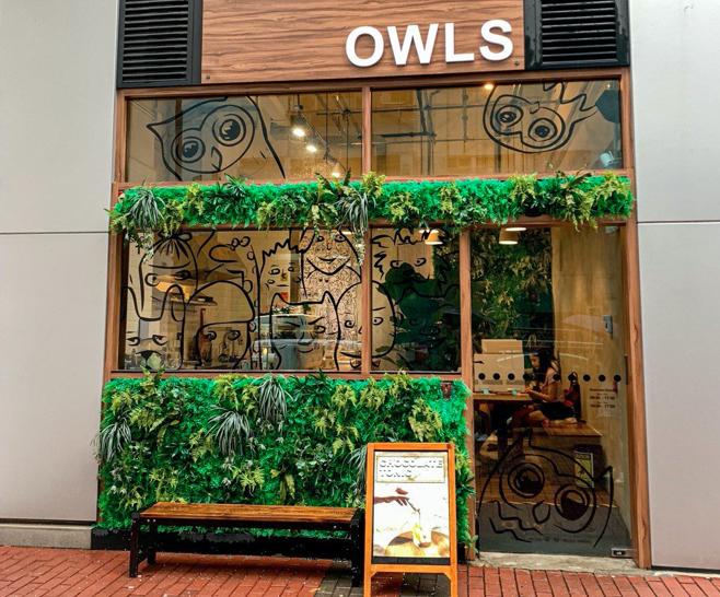 owls cafe lai chi kok