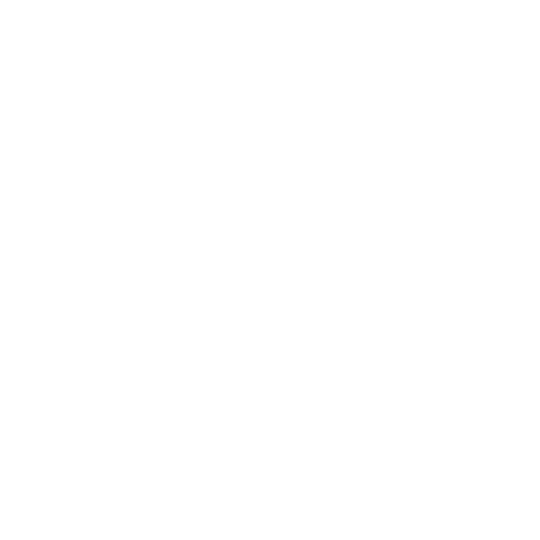 BGL Media Group