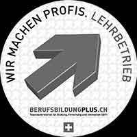 Logo wir machen Profis