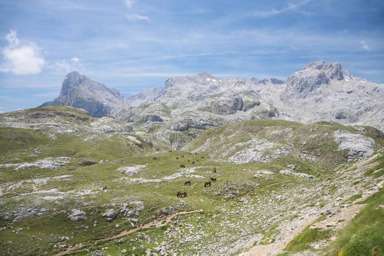 Rutas Aliva y Horcados 3: caballos en Picos de Europa de Cantabria