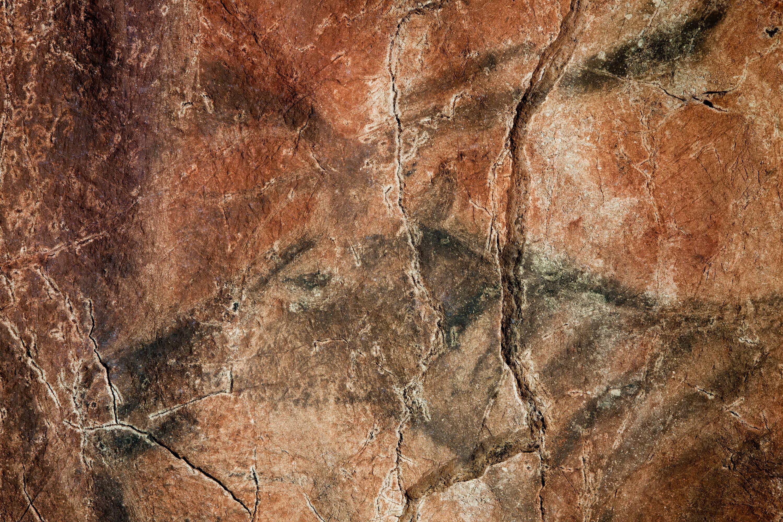 Pintura rupestre de ciervo en el panel principal de la Cueva de Tito Bustillo, en Ribadesella, Asturias