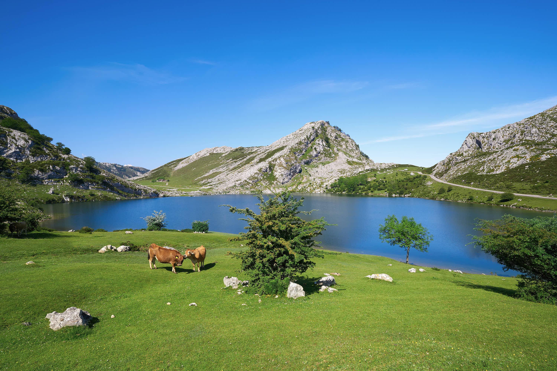 Lago Enol en primavera, uno de los Lagos de Covadonga, Cangas de Onis, Asturias