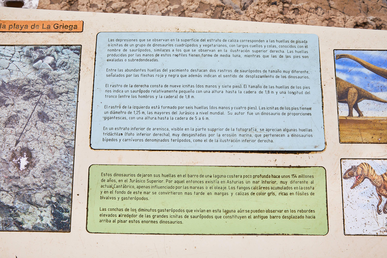 Explicación del yacimiento de icnitas con huellas de dinosaurio en la Playa de La Griega, Colunga, Asturias