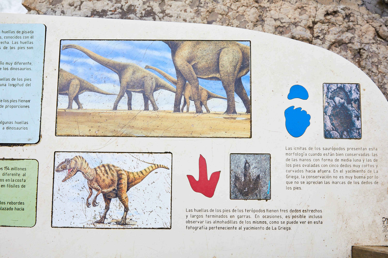 Información del yacimiento de icnitas con huellas de dinosaurio en la Playa de La Griega, Colunga, Asturias