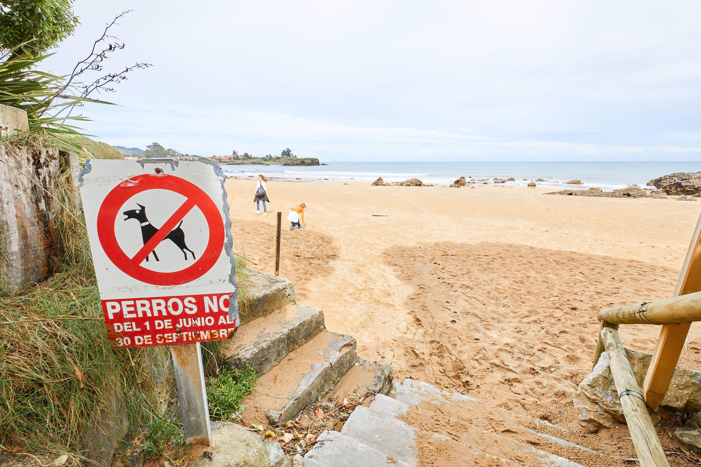 Señal de prohibido perros en la Playa de El Barrigón, Colunga, Asturias