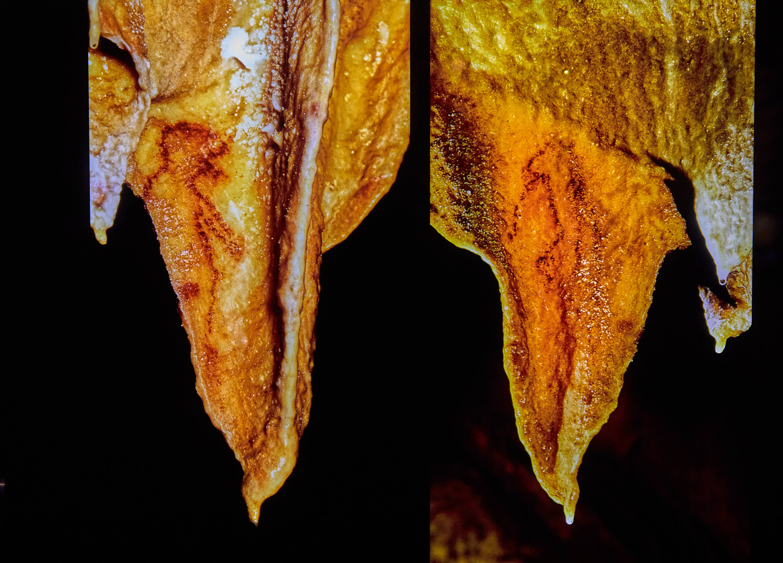 Figuras antropomorfas de la Cueva de Tito Bustillo en Ribadesella, Asturias