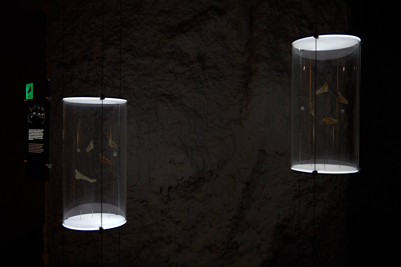 Vitrinas con huesos tallados del Centro de Arte Rupestre Tito Bustillo en Ribadesella, Asturias