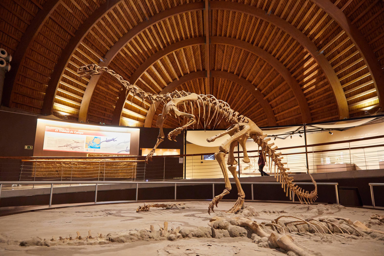 Esqueleto de dinosaurio en el Museo del Jurásico de Asturias, MUJA, Colunga
