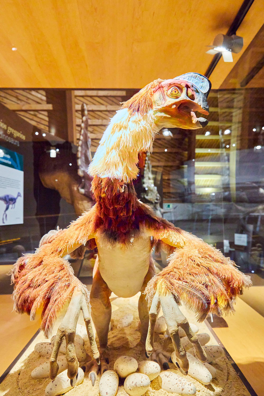 Maqueta de dinosaurio con pelo y plumas en el Museo del Jurásico de Asturias, MUJA, Colunga