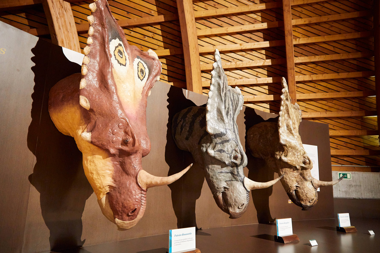 Cabezas de dinosaurio en el Museo del Jurásico de Asturias, MUJA, Colunga