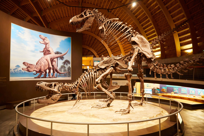 Pareja de Tiranosaurios copulando en el Museo del Jurásico de Asturias, MUJA, Colunga