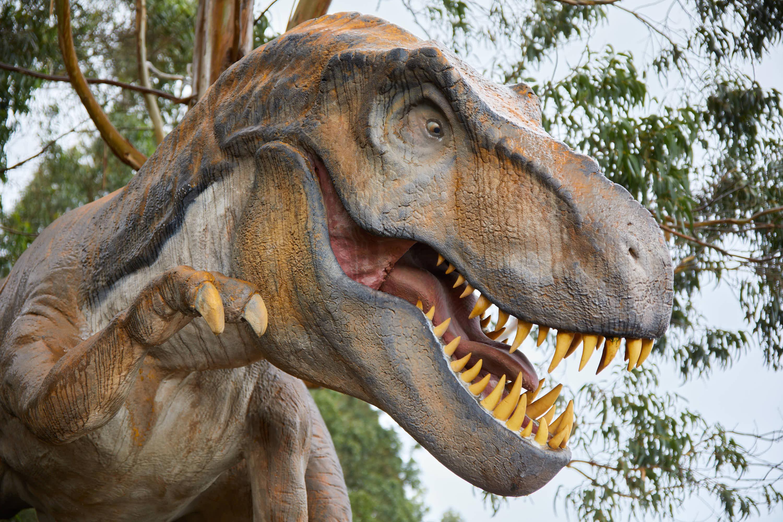 Cabeza de dinosaurio Tyrannosaurus en el Museo del Jurásico de Asturias, MUJA, Colunga