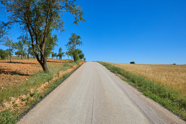 Pista de acceso a la Ruta de las Caras, Buendía, Cuenca, Castilla La Mancha