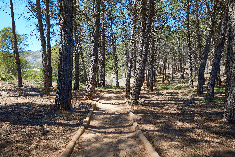 Camino de entrada a la Ruta de las Caras, Buendía, Cuenca, Castilla La Mancha