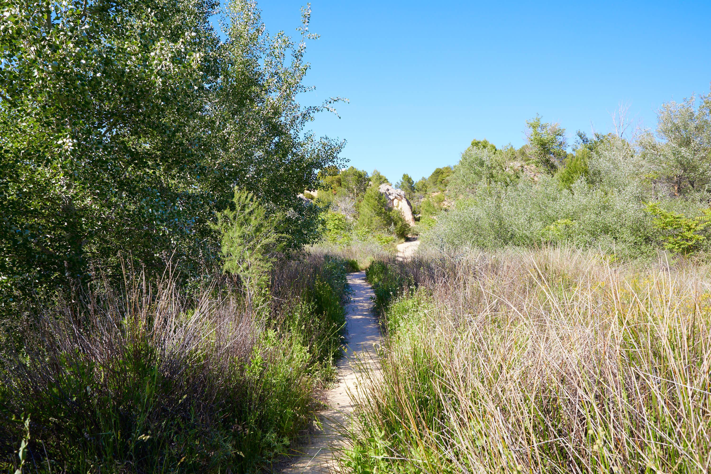 Camino en la Ruta de las Caras, Buendía, Cuenca, Castilla La Mancha