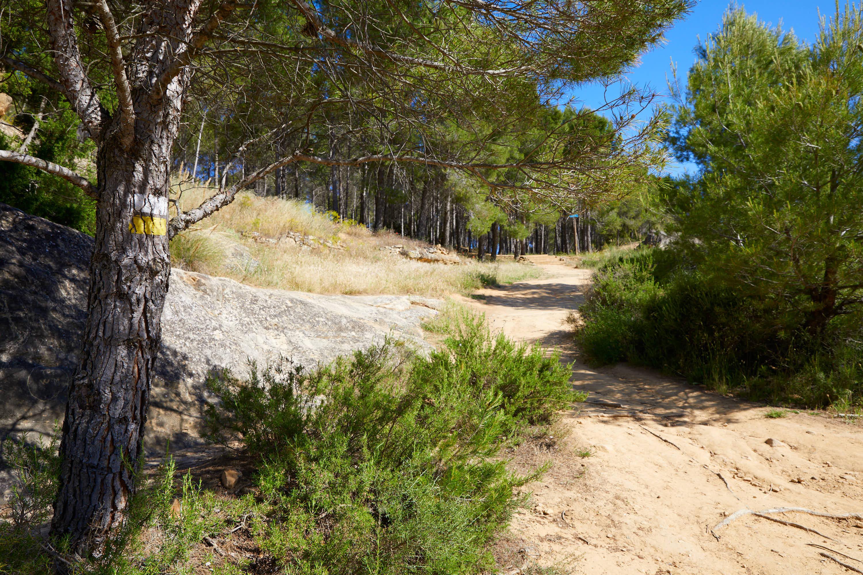 Camino de salida, en la Ruta de las Caras, Buendía, Cuenca, Castilla La Mancha