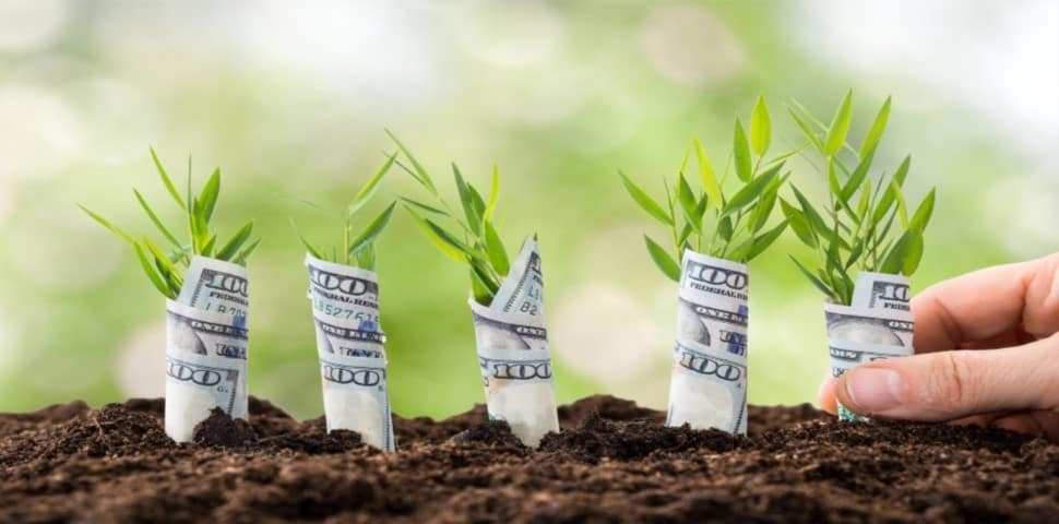 Investment Plan After An Exit
