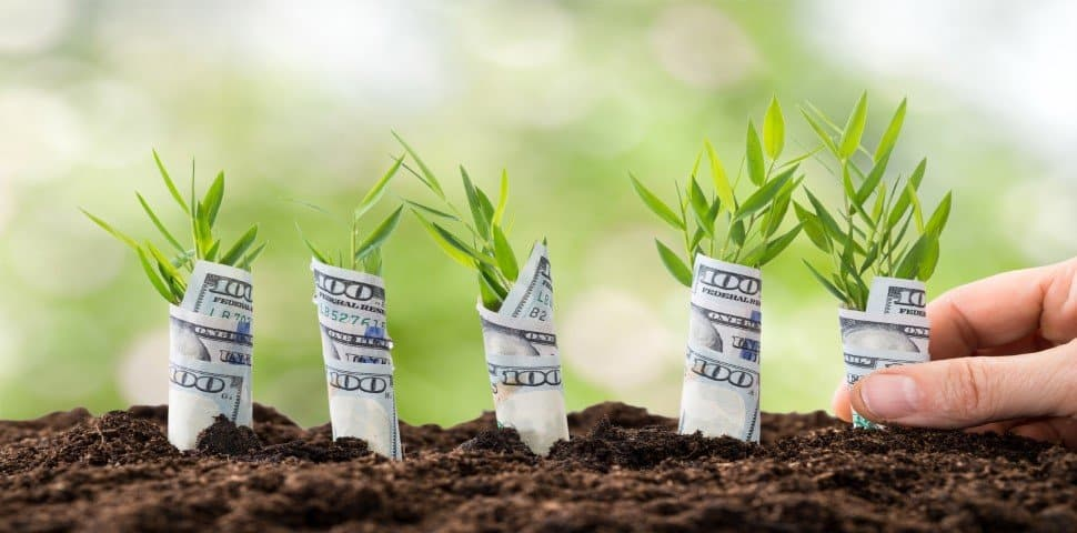 Grow Money Exiting Your Company
