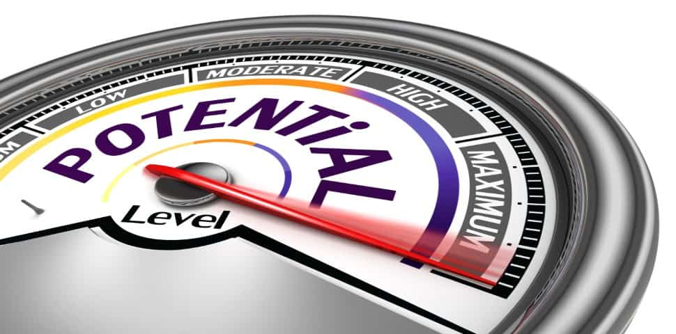 Maximize Your Business Value
