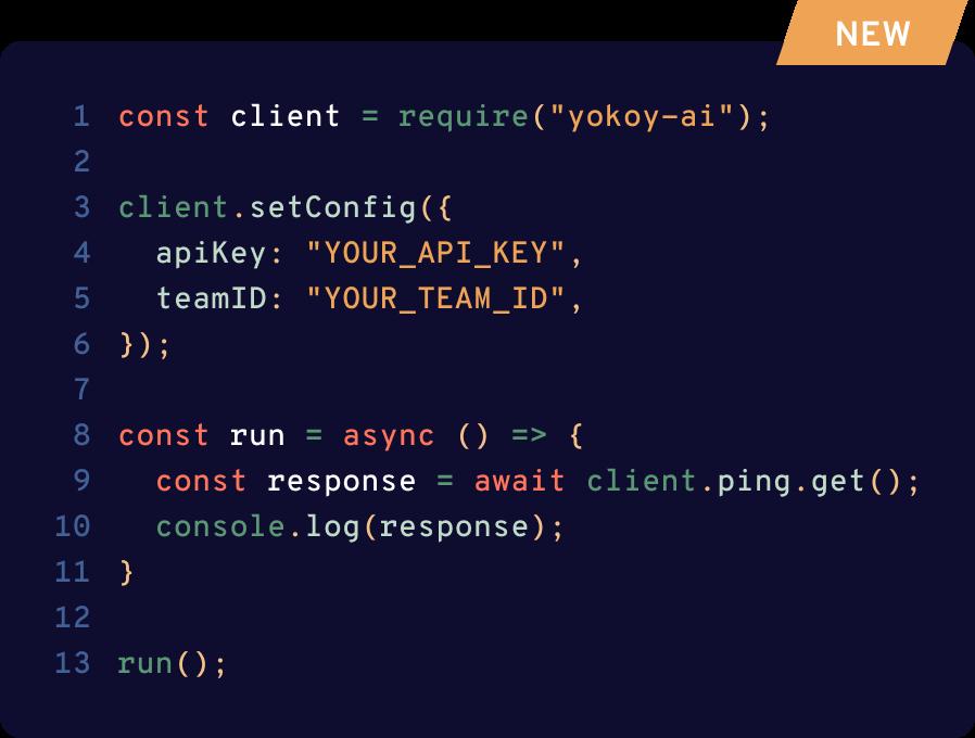 Yokoys Open Api depicted by code